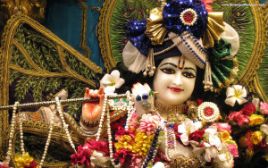 2581_iskcon-krishna-wallpaper-01 (2)